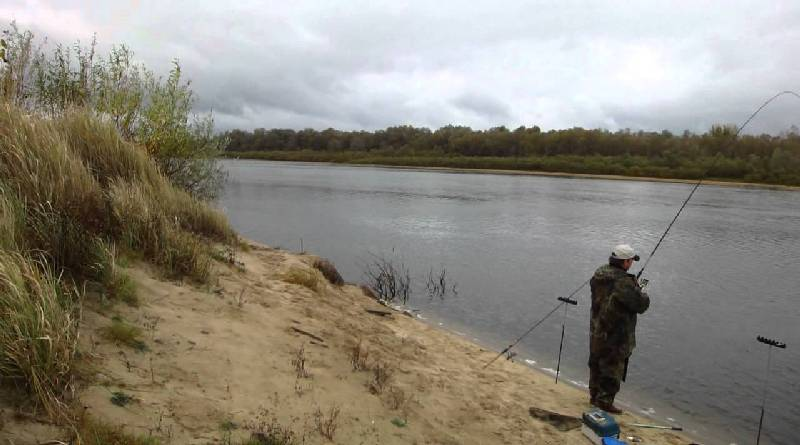 Fishing for bream in the river over