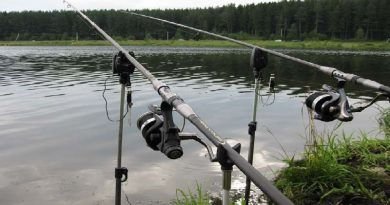 Tackles for fishing for carp