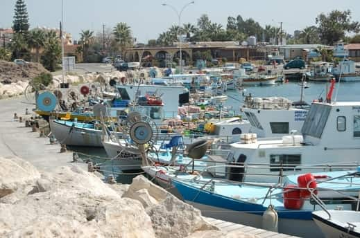 Sea fishing in Cyprus