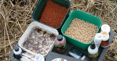 The best ingredients and additives for bait