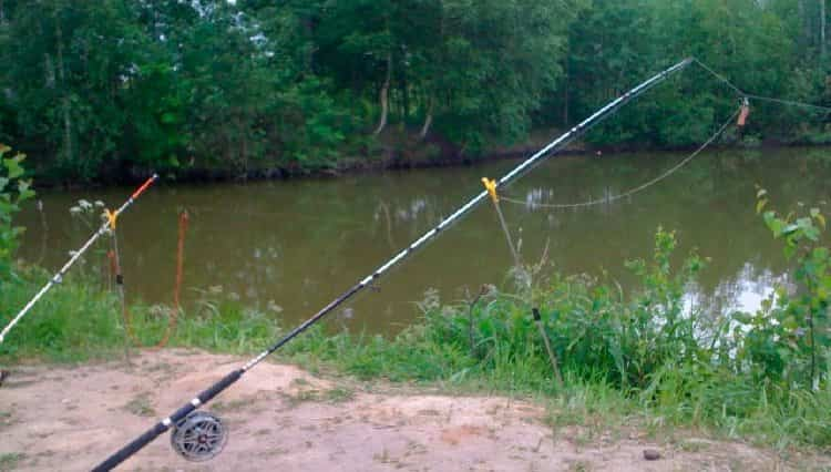 catching bream with bottom tackle