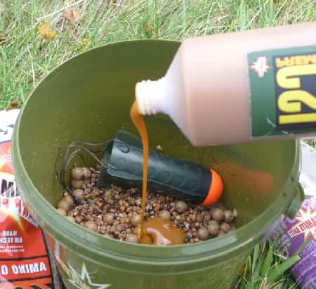 the bait for carp fishing