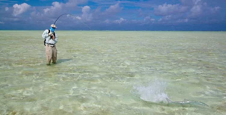 fly fishing in shallow water