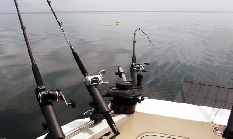 Choose a Spinning Rod for Fishing Trolling