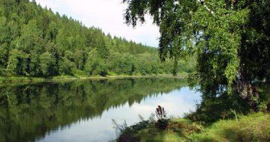 La pesca en los ríos