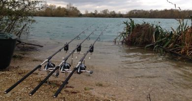 Carp fishing for amateurs and professionals