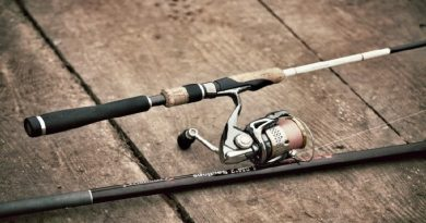 Selecting the spinning rod