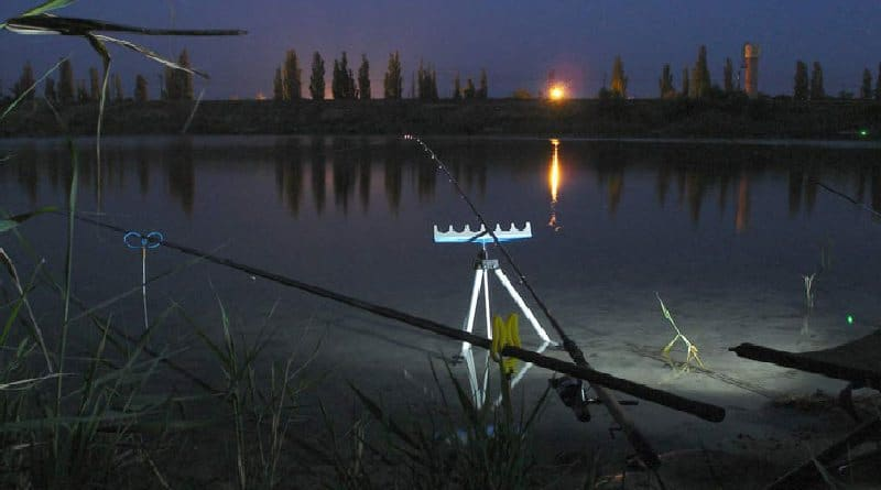 Fishing for Carp at Night