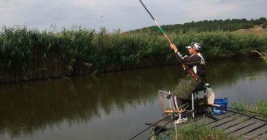 Fishing for perch fishing rod