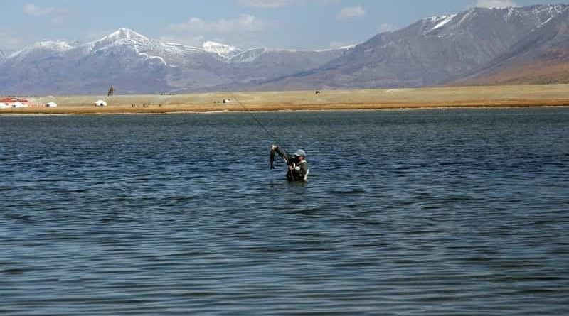 Fishing in Mongolia