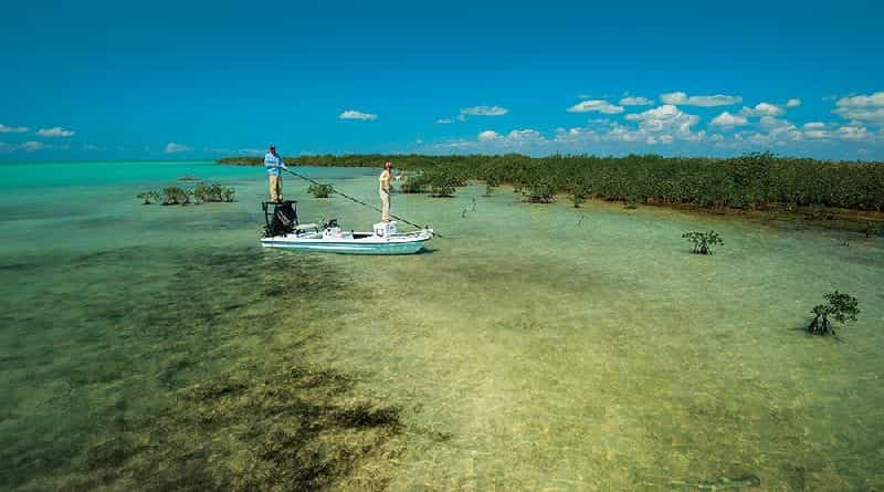 Sea fishing in shallow water