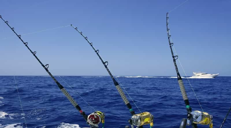 Tackle for sea fishing